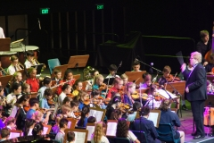 On stage Orchestra - 026