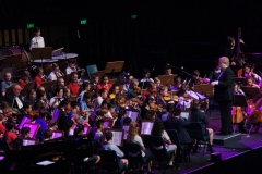 On stage Orchestra - 031