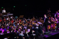 On stage Orchestra - 032