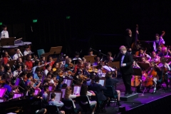 On stage Orchestra - 033