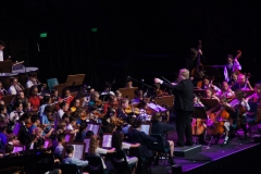 On stage Orchestra - 034