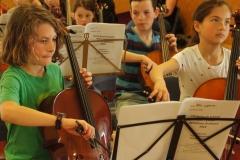 Orchestra - 001